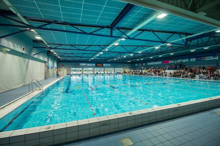 Zwembad De Peppel : Tuberides de peppel ede nl